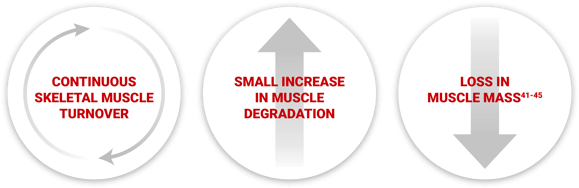 Continuous skeletal muscle turnover. Small increase in muscle degeneration, and loss in muscle mass.