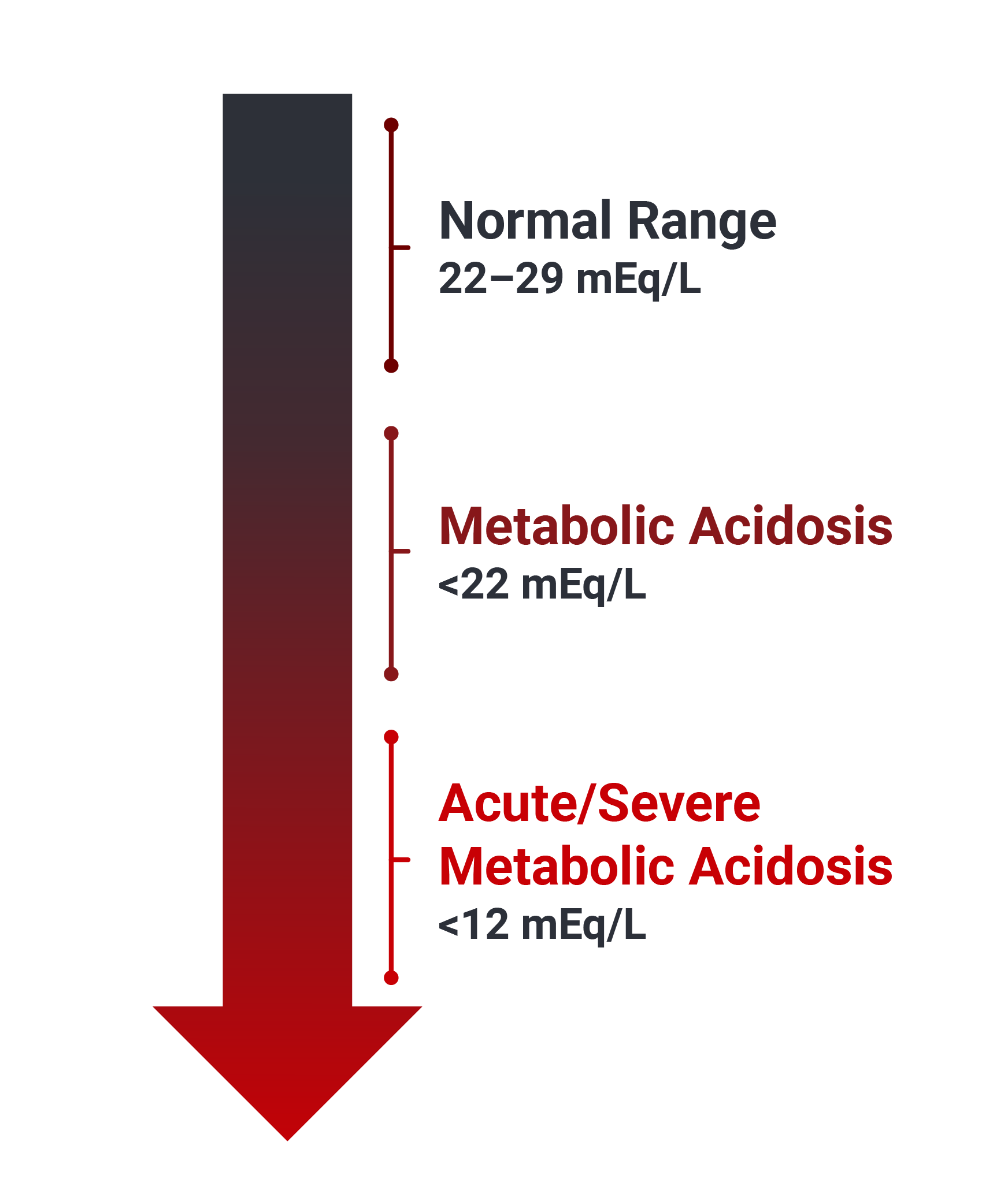 Arrow showing the levels of bicarbonate in the blood